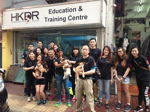 ), they had the chance to understand the challenges HKDR