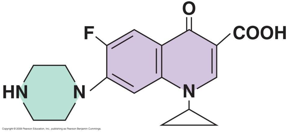 Growth factor Analog Synthetic Antimicrobial Drugs Phenylalanine (an amino acid) p-fluorophenylalanine Uracil (an RNA base)