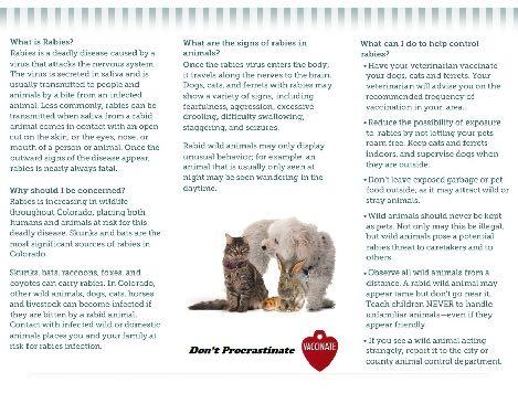 Downoad a pdf version of the Rabies Prevention Brochure I have received and read the Rabies Prevention Brochure Please read the heart worm educational material provided in your adoption paperwork.