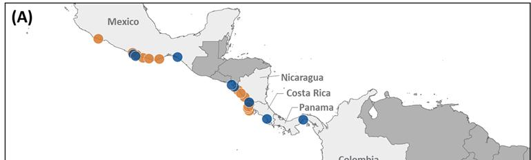 Figure 2. Eastern Pacific leatherback priority geographies.