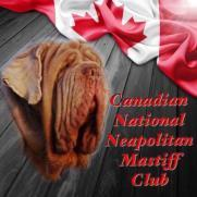 SPECIALTY SHOW CANADIAN NATIONAL NEAPOLITAN MASTIFF CLUB SATURDAY, JULY 6, 2019 JUDGE 51 County Rd., # 3 E., Brucefield, ON N0M 1J0 CLUB OFFICERS President... Linda-Young-Roberts Vice-President.